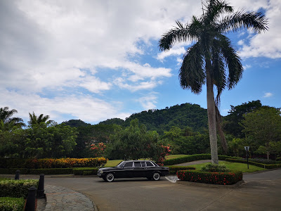 LARGE-PALM-TREE-AND-MERCEDES-LIMOUSINE-COSTA-RICA.jpg