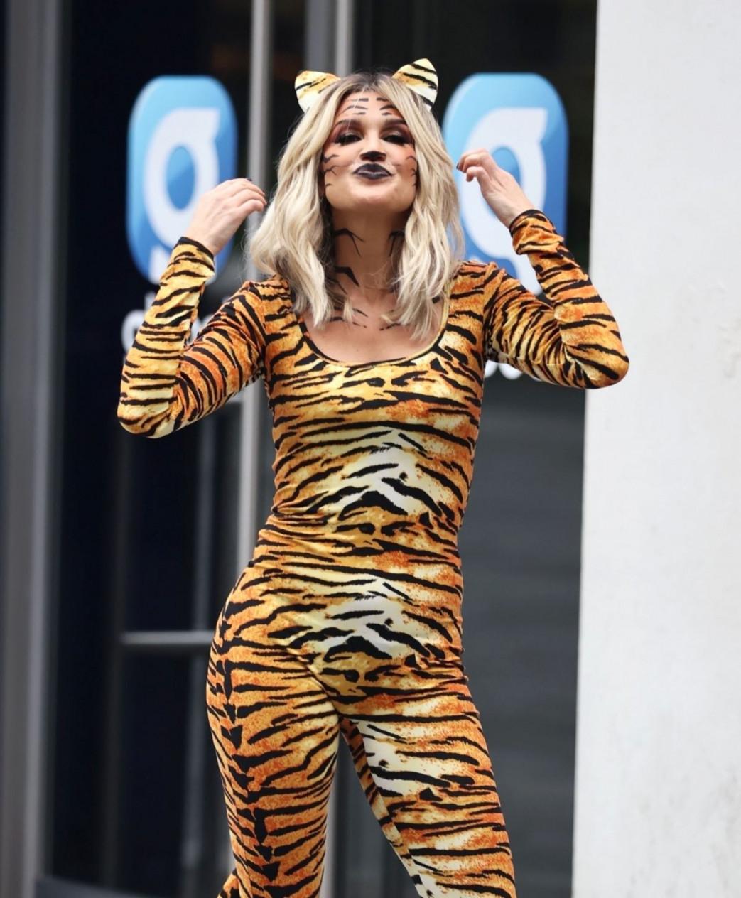 Ashley-Roberts-Stunning-in-Tiger-Catsuit-10.jpg