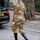 Ashley-Roberts-Stunning-in-Tiger-Catsuit-2