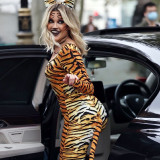 Ashley-Roberts-Stunning-in-Tiger-Catsuit-3