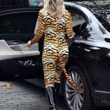 Ashley-Roberts-Stunning-in-Tiger-Catsuit-4