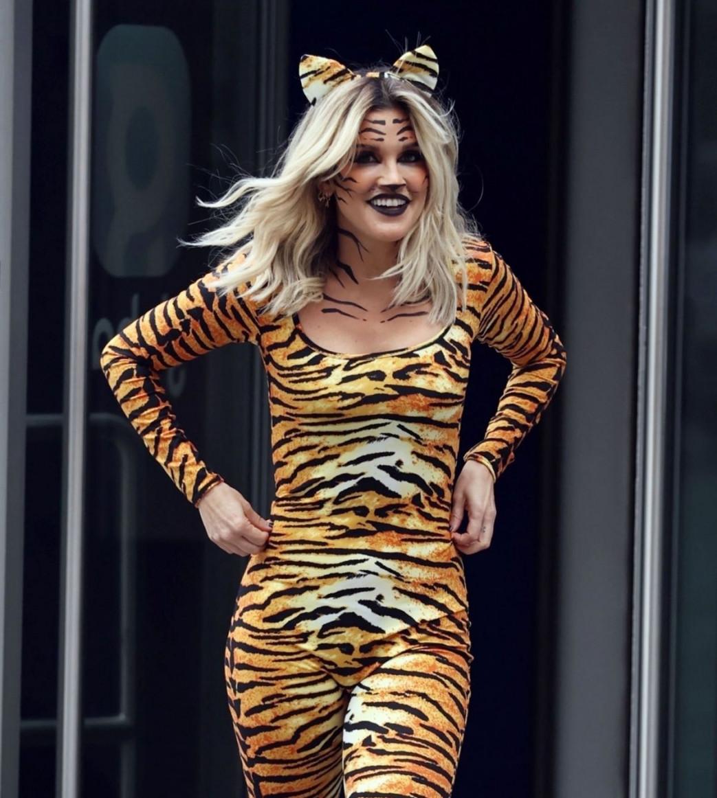 Ashley-Roberts-Stunning-in-Tiger-Catsuit-5.jpg